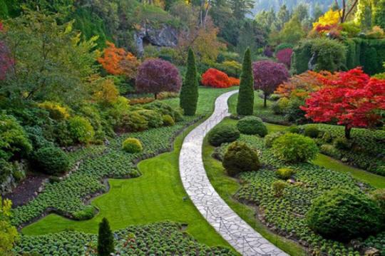 Giardinieri Verona - Manutenzione e disinfestazione giardini e prati